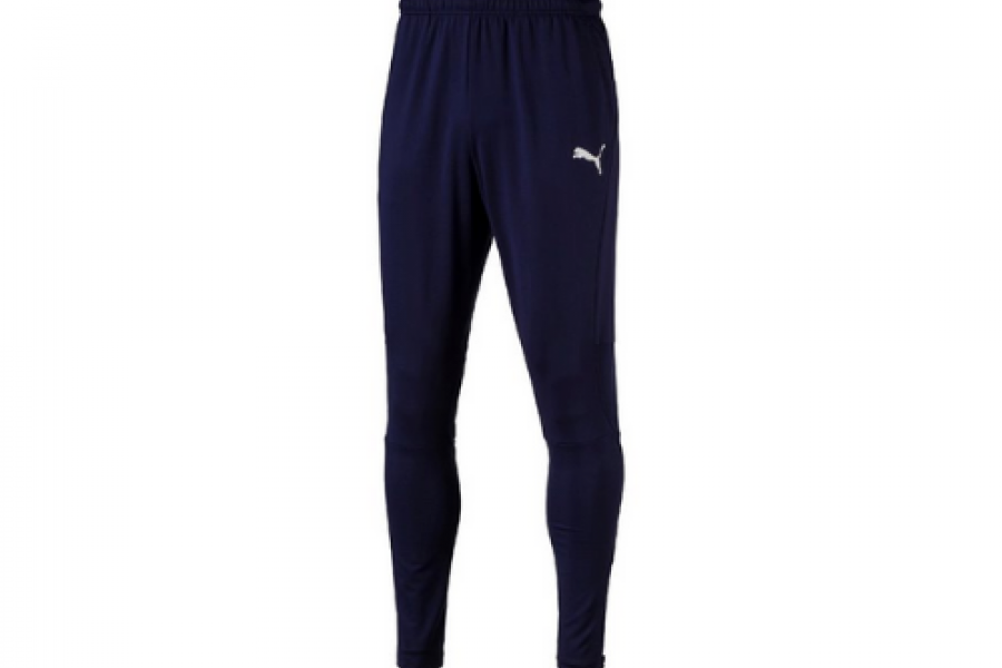 Men's Sports Pants Puma Liga Training Pants Pro Blue